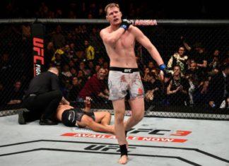 Alexander Volkov nocauteou Werdum e somou sua quarta vitória seguida no UFC (Foto: Getty Images)